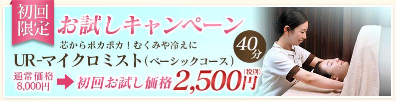 お試しキャンペーン UR-マイクロミスト(ベーシックコース)40分